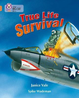 True Life Survival Band 12/Copper by Janice Vale