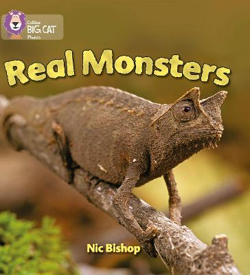 Real Monsters Band 03/Yellow by Nic Bishop