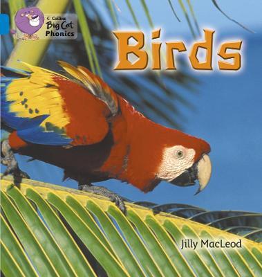 Birds Band 04/Blue by Jilly McLeod