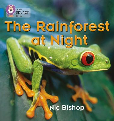 The Rainforest at Night Band 04/Blue by Nic Bishop