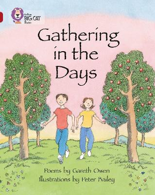 Gathering in the Days Band 14/Ruby by Gareth Owen