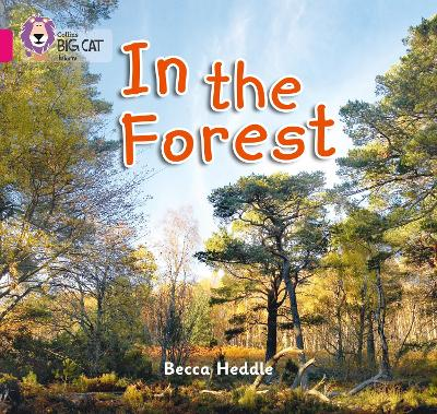 In the Forest Band 01b/Pink B by Becca Heddle