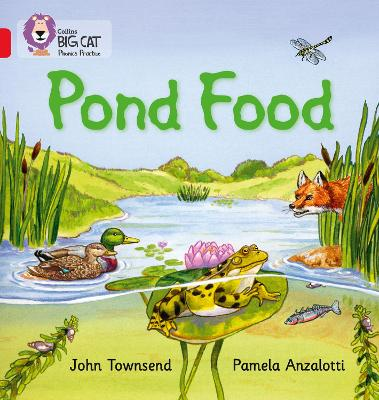 Pond Food Band 02b/Red B by John Townsend