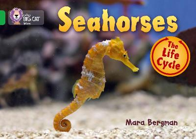 Seahorses Band 05/Green by Collins Big Cat