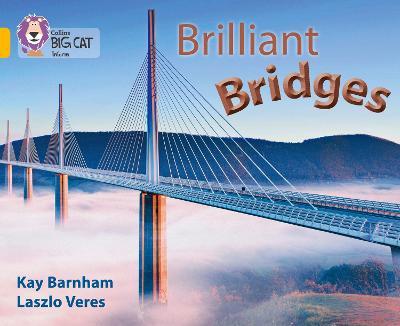 Brilliant Bridges Band 09/Gold by Collins Big Cat