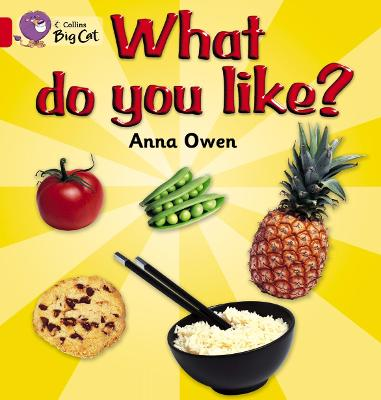 What Do You Like? Workbook by
