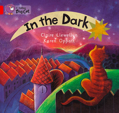 In the Dark Band 02a/Red a by Claire Llewellyn