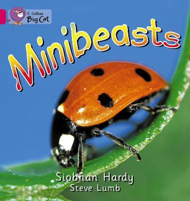Minibeasts Workbook by