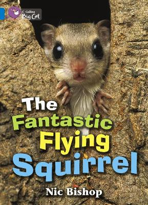 The Fantastic Flying Squirrel Band 04/Blue by Nic Bishop
