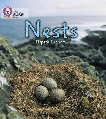 NESTS Band 02a/Red a by Elspeth Graham