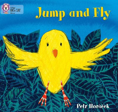 Jump and Fly Band 01a/Pink a by Petr Horacek
