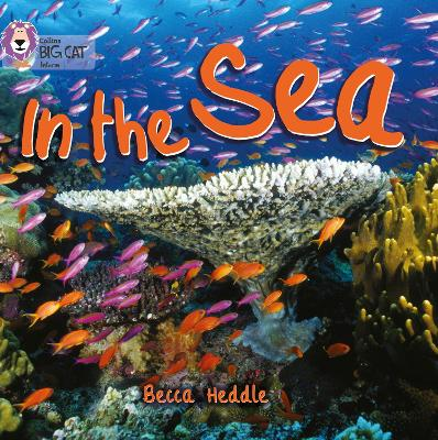 In the Sea Band 01b/Pink B by Becca Heddle