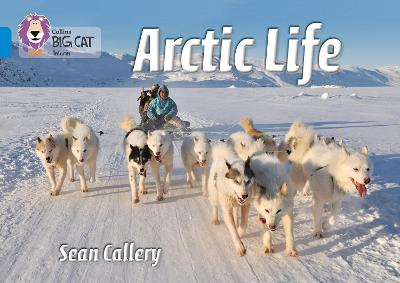 Arctic Life Band 04/Blue by Sean Callery