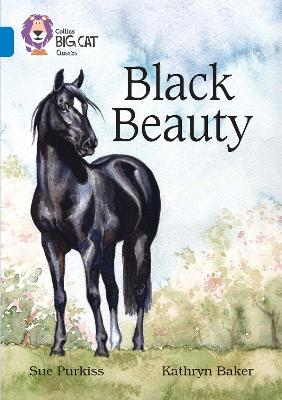 Black Beauty Band 16/Sapphire by Sue Purkiss