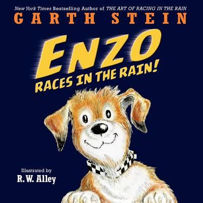 Enzo Races in the Rain! by Garth Stein