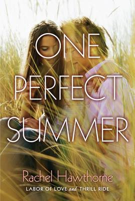 One Perfect Summer Labor of Love and Thrill Ride by Rachel Hawthorne