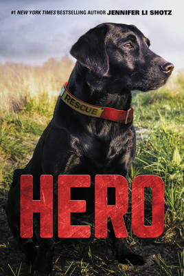 Hero by Jennifer Li Shotz