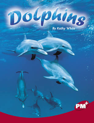 Dolphins by
