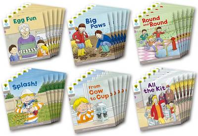 Oxford Reading Tree Biff, Chip and Kipper Stories Decode and Develop: Level 1: Level 1 More B Decode & Develop Class Pack of 36 by Roderick Hunt
