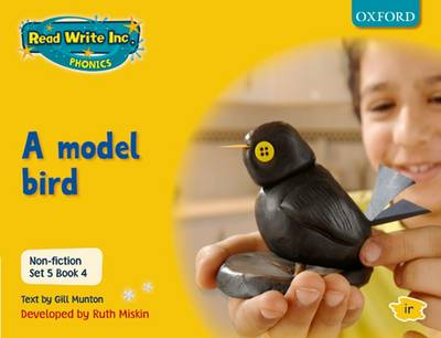 Read Write Inc. Phonics: Non-fiction Set 5 (Yellow): A model bird - Book 4 by Gill Munton, Ruth Miskin