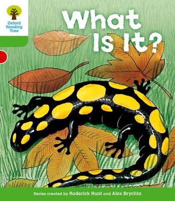 Oxford Reading Tree: Level 2: More Patterned Stories A: What Is It? by Thelma Page, Roderick Hunt