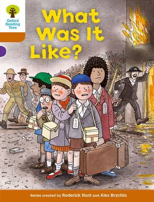 Oxford Reading Tree: Level 8: More Stories: What Was It Like? by Roderick Hunt