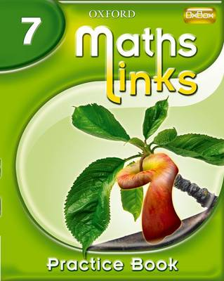 MathsLinks: 1: Y7 Practice Book by Ray Allan