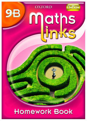 MathsLinks: 3: Y9 Homework Book B Pack of 15 by Ray Allan