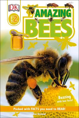 Amazing Bees Buzzing with Bee Facts! by Sue Unstead