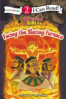 Facing the Blazing Furnace by David Miles