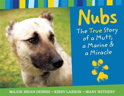 Nubs: The True Story by Mary Nethery, Kirby Larson, Brian Dennis