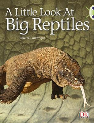 BC NF Blue (KS1) B/1B A Little Look at Big Reptiles by Pauline Cartwright