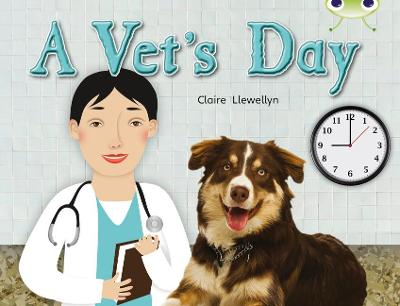 BC NF Green B/1B A Vet's Day by Claire Llewellyn