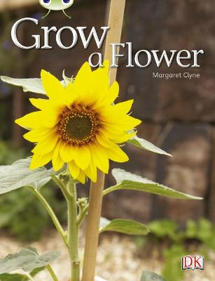 BC NF Red C (KS1) Grow a Flower by Margaret Clyne