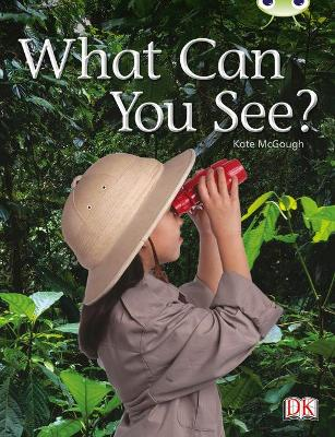 Bug Club Non-fiction Red A (KS1) What Can You See? 6-pack by Kate McGough