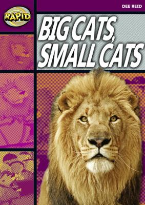 Rapid Stage 1 Set A: Big Cats Small Cats (Series 1) by Dee Reid