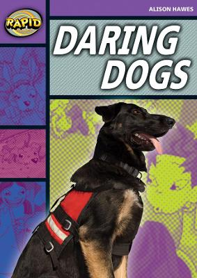 Rapid Stage 1 Set B: Daring Dogs(Series 1) by Alison Hawes