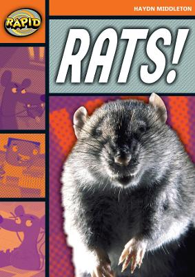 Rapid Stage 4 Set B: Rats! (Series 1) by Haydn Middleton