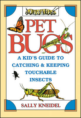 Pet Bugs A Kid's Guide to Catching and Keeping Touchable Insects by Sally Kneidel