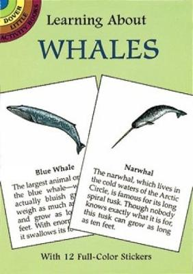 Learning About Whales by Sy Barlowe