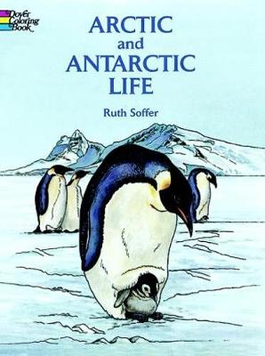 Arctic and Antarctic Life Coloring Book by Ruth Soffer