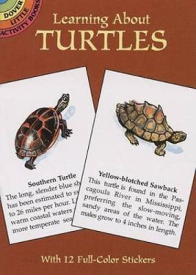 Learning about Turtles by Jan Sovak