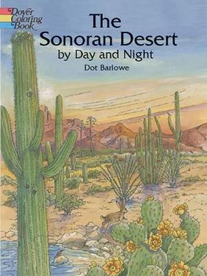 Sonoran Desert by Day and Night by Dot Barlowe