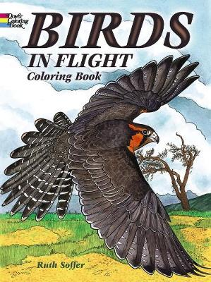 Birds in Flight Coloring Book by Ruth Soffer