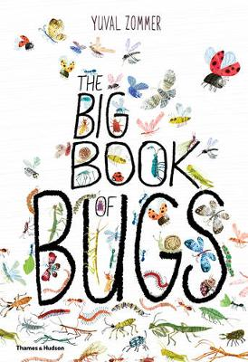 The Big Book of Bugs by Yuval Zommer, Barbara Taylor
