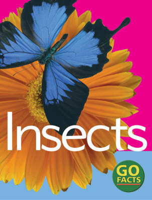 Insects by Katy Pike