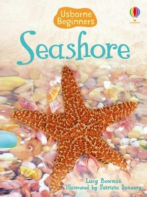 Seashore by Lucy Bowman