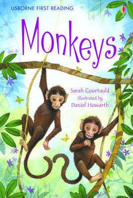Monkeys by Sarah Courtauld