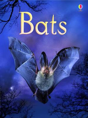 Bats by Megan Cullis