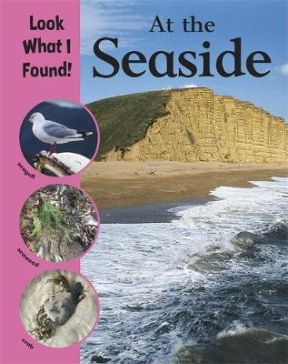 Look What I Found!: At The Seaside by Paul Humphrey